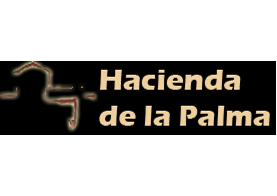 palma3-logo
